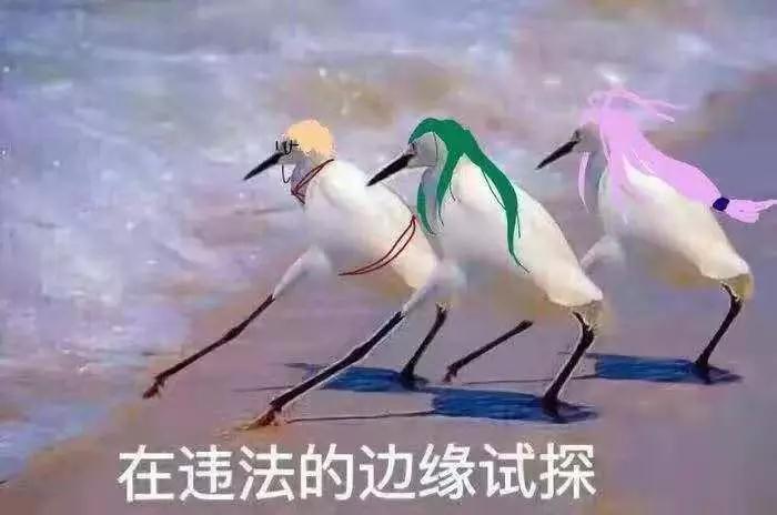 厦门广告公司_20190927163037.jpg